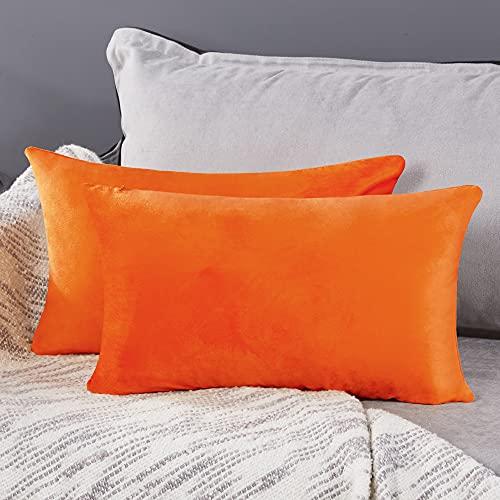Deconovo Fundas para Cojines de Almohada del Sofá Cubierta Suave Decorativa Protector para Hogar 2 Piezas 30 x 50 cm Naranja