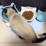 QWEA comedero automático para Gatos, Cuenco de cerámica para Gatos, Juego de Comida para Gatos, Cuenco de arroz, Cuenco de Agua para Gatos, Almohadilla para Enviar, Limpieza conven