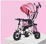 GCXLFJ Triciclo Evolutivo Toral Cochecito de bebé bebés y niños pequeños Triciclo Bicicleta Pliegue Girar Asiento Baby Trolley Baby Carriage (Color: Rosa) (Color : Pink)