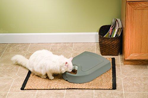 PetSafe『おるすばんフィーダー5食分デジタル(PFD18-14900)』