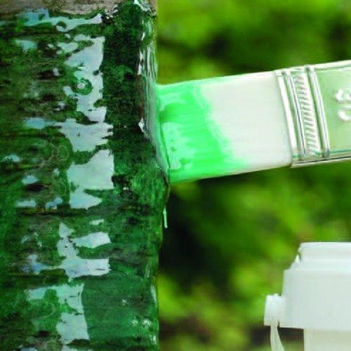 Schacht Raupenleim grün 1kg