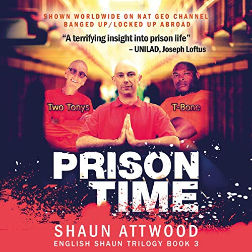 Prison Time audiobook cover art