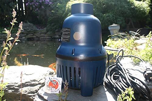 AquaForte Tuyau Pompe hf30000 30 m³/h, Hauteur de refoulement 4 m, 200 W