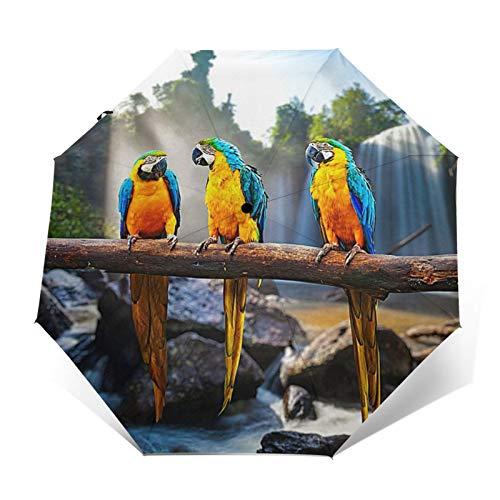 DOWNN Paraguas automático triple plegable 3D con impresión exterior colorido loros en rama, protector solar impermeable, resistente al viento, duradero, plegable, para hombre y mujer al aire libre