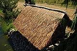 Wilai Palmendächer Strohdach Palmdach Paneele Palmschindel Palmenblätter 145 cm Reetdach für Garten, Balkon und Terrasse - 5