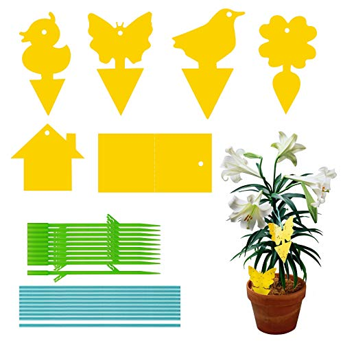 FALUCKYY Dual-Sided Fly Catcher,Fly Trap Pack of 90 Yellow Stickers, Glue Traps for Protecting Indoor Outdoor Plants, Potted Plants, Balcony, Garden (Type-2)