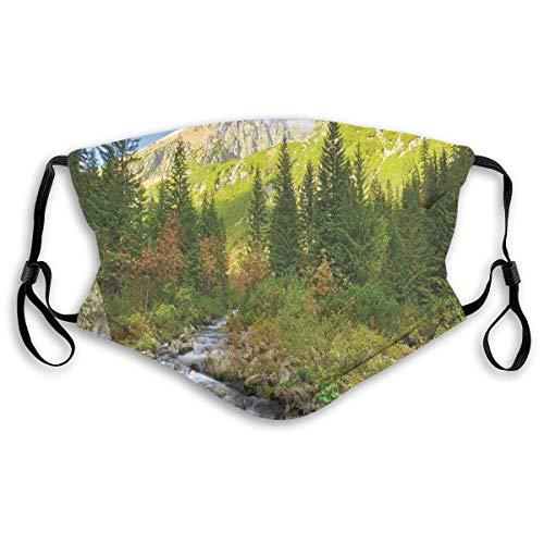 YUDILINSA Gesichtsbedeckung,Roztoka Stream Tatra Nationalpark Karpaten Polen Wälder,Sturmhaube Unisex Wiederverwendbar Winddicht Staubschutz Mund Bandanas Outdoor Camping Motorrad Mit 2 Filtern