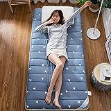 ZHONGXIN Colchón de Suelo japonés, Alfombrilla de Tatami para Dormir, colchón de futón Suave de Invierno Plegable para Dormitorio (D,90 * 190cm)