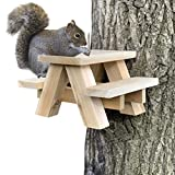 Squirrel Feeders Review and Comparison