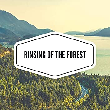 Rinsing of the Forest