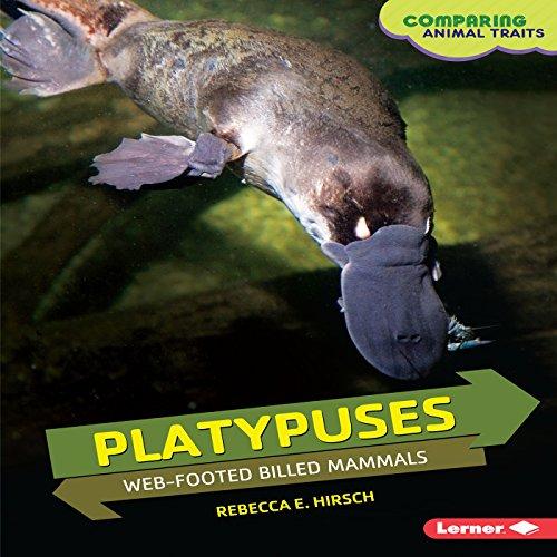 Platypuses copertina