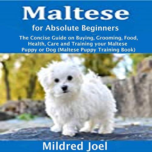 Maltese for Absolute Beginners cover art
