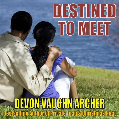 Destined to Meet audiobook cover art