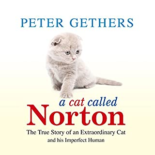 A Cat Called Norton cover art
