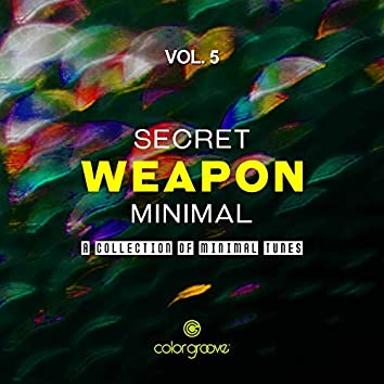 Secret Weapon Minimal, Vol. 5 (A Collection Of Minimal Tunes)