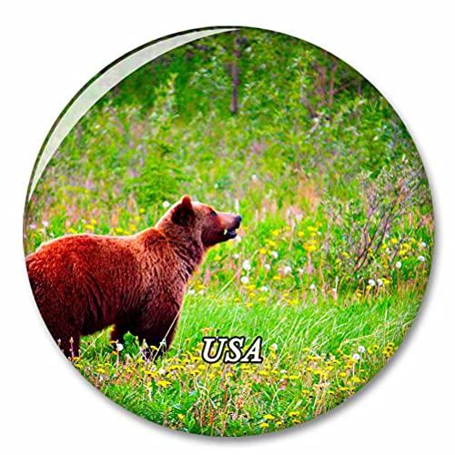 Estados Unidos América Grizzly Alaska Imán de Nevera, imánes Decorativo, abridor de Botellas, Ciudad turística, Viaje, colección de Recuerdos, Regalo, Pegatina Fuerte para Nevera
