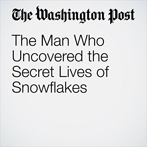 The Man Who Uncovered the Secret Lives of Snowflakes copertina