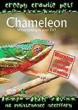 Creepy Crawlie Pets - Chameleon [DVD]