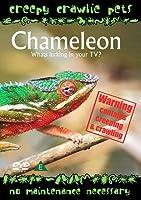 Creepy Crawlie Pets - Chameleon [Import anglais]