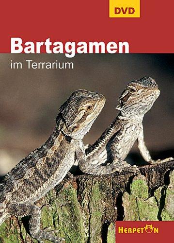Bartagamen im Terrarium, 1 DVD