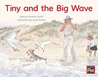 Tiny and the Big Wave: Bookroom Package Yellow Fiction Level 8 Grade 1 (Rigby PM Collection)