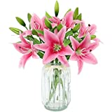 Olrla Flores Artificiales de imitación Lily 6 Ramos de Flores, Tacto Verdadero Falso Flor del Lirio de Fiesta de la Boda casa Comprar decoración, Flora disposición (Rosa, 6)