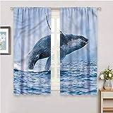 DIMICA - Cortina extralarga bajo el agua con estampado de ballena jorobada para decoración del hogar