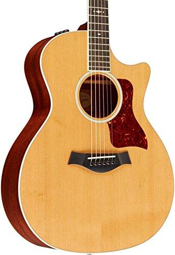 Taylor 514ce · Akoestische gitaar