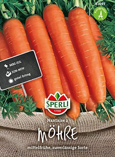 Sperli Premium Möhren Samen Nantaise 2 ; Mittelfrühe zuverlässige Sorte ; 1000 Karotten Samen