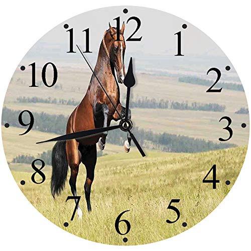 """Yaoni Mode Moderne Horloge Murale Muette 30cm/12"""",Chevaux, Baie, Akhal, Teke, étalon Cheval, élevage, sur, Les, Noble, mammifère, Dehors, p,horloges pour la Maison Salon Cuisine Chambre Bureau école"""