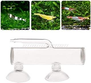 Professional For Aquarium Shrimp Eggs, Aquarium Egg Incubator Hatch Crystal Shrimp Fish Tank Transparent Glass - Aquarium Eggs, Aquarium Supplies In Aquariums, Aquarium Supplies Fish