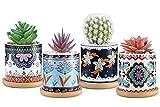Roylvan 4 PZS Macetas de Suculentas Cerámicas, 7,5 cm Tiestos de Cactus con Orificios Drenaje Bandejas Bambú Patrones Flores Elegantes Depuración Aire para Decoración Hogar Oficina Ventana, Multicolor