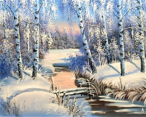 Forest 5D Diamond Painting Kits, DIY Diamond Painting Cross Stitch Full Drill Crystal Rhinestone Painting Embroidery Pictures for Home Decor Square 40x50cm