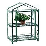 Invernadero de jardín de 2 niveles con estructura y estantes de metal, cubierta de PVC