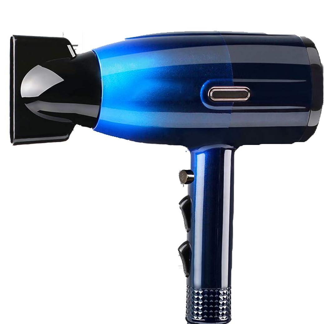 眉符号ナプキンイオンヘアードライヤーハイパワーヘアードライヤーホットとコールド風ホームミニダクトは、髪型と形状に適した髪を養います