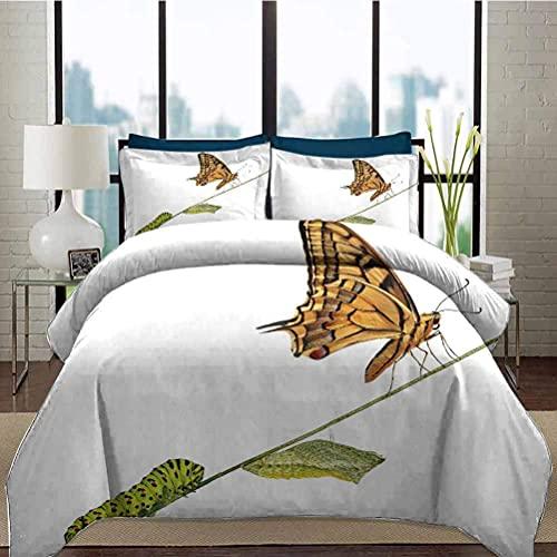HARXISE Bettwäsche Bettbezug Set Schwalbenschwanz Schmetterling Krippe Bettbezug Set Raupe Puppen Schmetterling Leben Bühnen Inspirierend Natur Dekorativ 3-teiliges Bettwäsche-Set