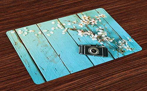 ABAKUHAUS Bois Rustique Lot de Sets de Table en 4 pièces, Printemps Blanc Cerise, Tissu Lavable pour Salle à Manger et Cuisine, 30 cm x 45 cm, Bleu pâle et Multicolore