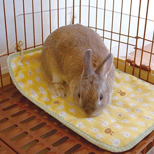 ドギーマン『ウサギのマットでほりほり』