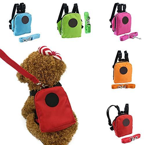 JIASDHG - Mini Mochila para Mascotas, Gatos, Perros, con arnés y ...