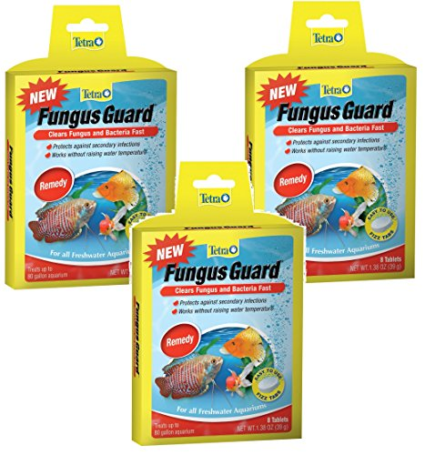 Tetra Fungus Guard Tablets - 24 Tablets Total (3 Packs with 8 Tablets per Pack)