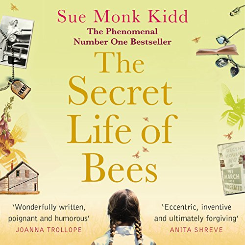 The Secret Life of Bees audiobook cover art