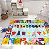 Pauwer Alfombra de juego para niños, extra grande, 100 x 150 cm, colección Playtime ABC, números, formas, animales y colores, para sala de estar, dormitorio, sala de juegos, aula.