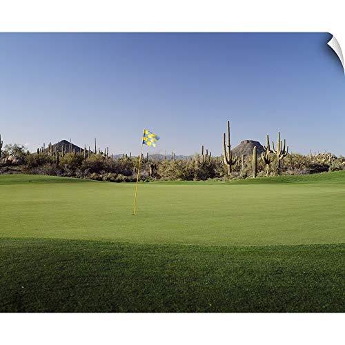 CANVAS ON DEMAND Golf Flag in a Golf Course, Troon North Golf Club, Scottsdale, Maricopa County, Arizona Wall De.