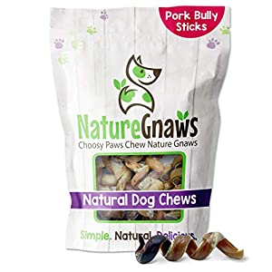 Nature Gnaws Pork Bully Stick Springs for Dogs – Premium Natural Bones – Long Lasting Dog Chew Treats for Small & Medium Dogs – Rawhide Free – 3-4 Inch (20 Count)