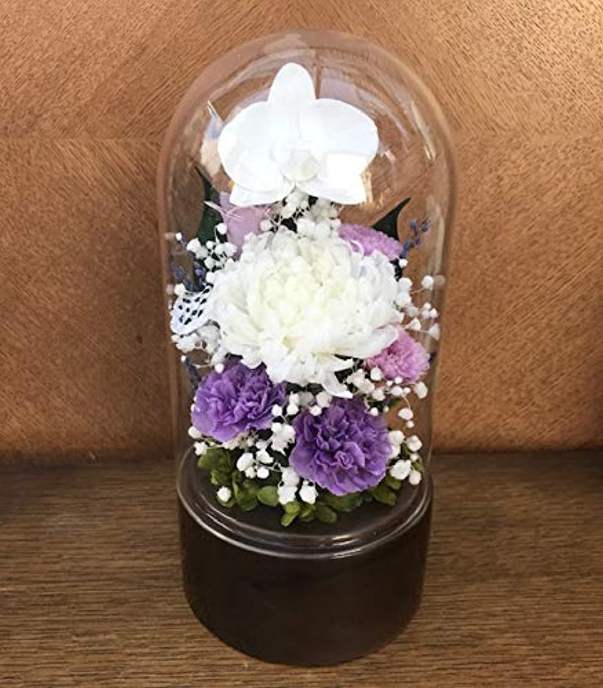 テレビホース三番仏花 Lサイズガラスドーム入 偲い 胡蝶蘭と輪菊淡藤色の小花アレンジ 咲き続け る生花 プリザーブドフラワー ギフト