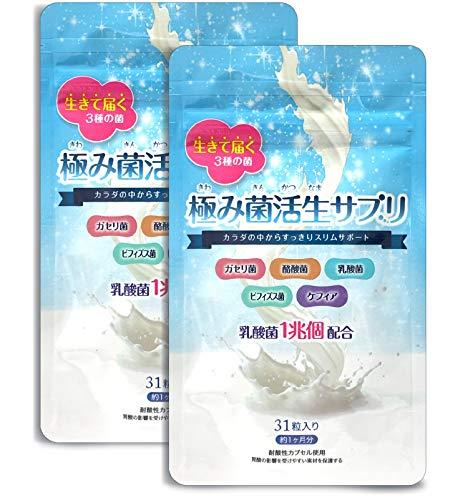 【公式】極み菌活生サプリ 31粒 やせ菌 サプリメント 乳酸菌 酪酸菌 ビフィズス菌 2袋(約2ヶ月分)
