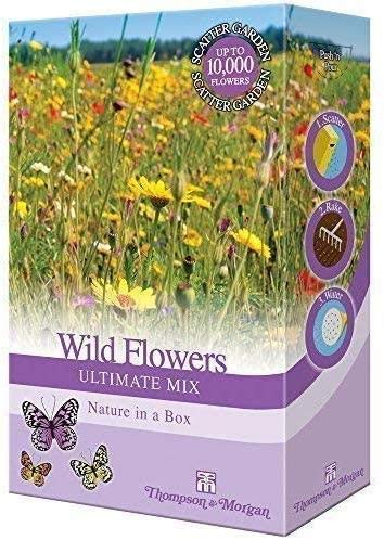 Thompson & Morgan - Wildflowers Ultimate Mix Scatter Pack - Garden Plant Seed Grow Your Own Poppies, Meadow Flowers & Grasses