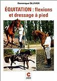 Equitation - Flexions et dressage à pied