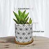 Zoom IMG-2 lewondr vasi da fiori in