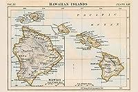ERZAN1000ピース ジグソーパズルハワイ諸島1883年の歴史的なアンティークスタイルの地図減圧大人知育玩具